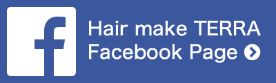 TERRA Facebook